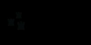 Dublin City Council Logo Bk